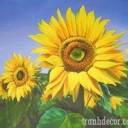 http://tranhdecor.com/wp-content/uploads/2013/06/Tranh-hoa-huong-duong-12.jpg