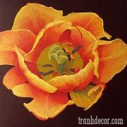 http://tranhdecor.com/wp-content/uploads/2013/06/tranh-hoa-tulips-10.jpg