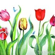 http://tranhdecor.com/wp-content/uploads/2013/06/tranh-hoa-tulips-12.jpg