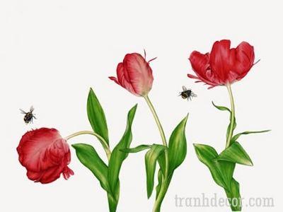 tranh-hoa-tulips (6)