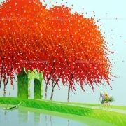 http://tranhdecor.com/wp-content/uploads/2013/07/Phan-Thu-Trang-15.jpg