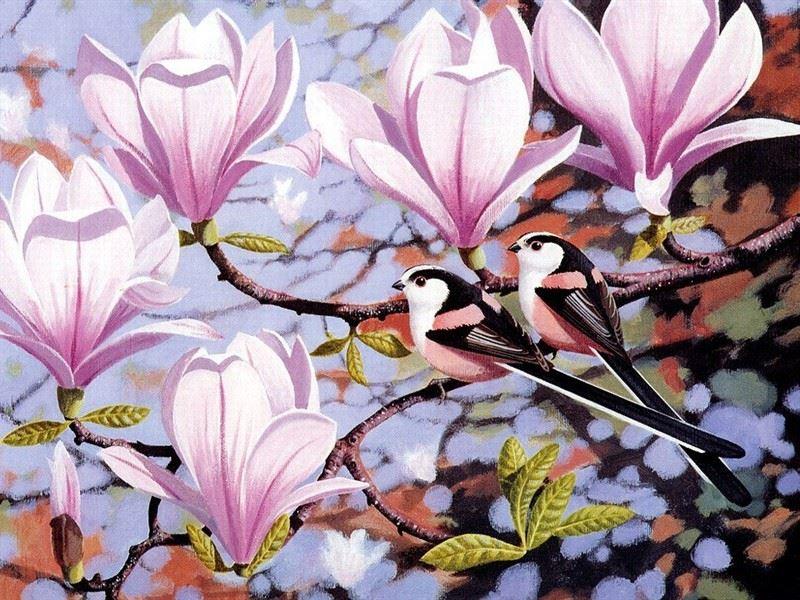 tranh phong thuy hoa moc lan