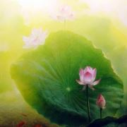 tranh phong thủy hoa sen